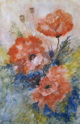 Poppies. Water-colour dream