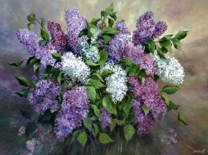 Fragrance of lilac